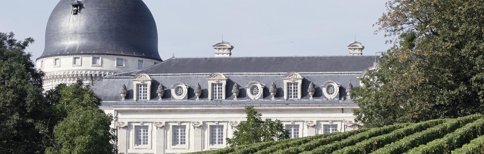 Tours Entre Berry y Loire, vinos y castillos pequeños y grandes - Valle del Loira - Circuitos desde Paris