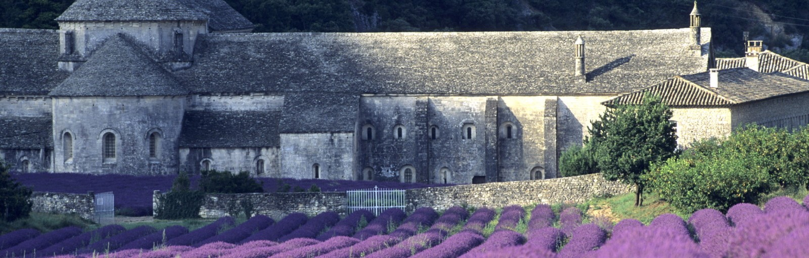 Tours Two days in Provence - Multi-régional - Circuitos desde Paris