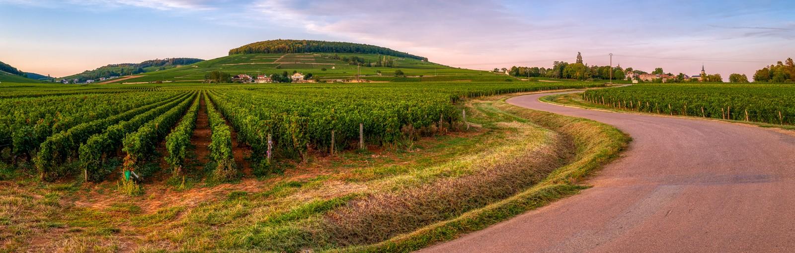 Tours 3 noches en Borgoña: exploración, sensaciones, castillos y vinos! - Borgoña - Excursiones desde París