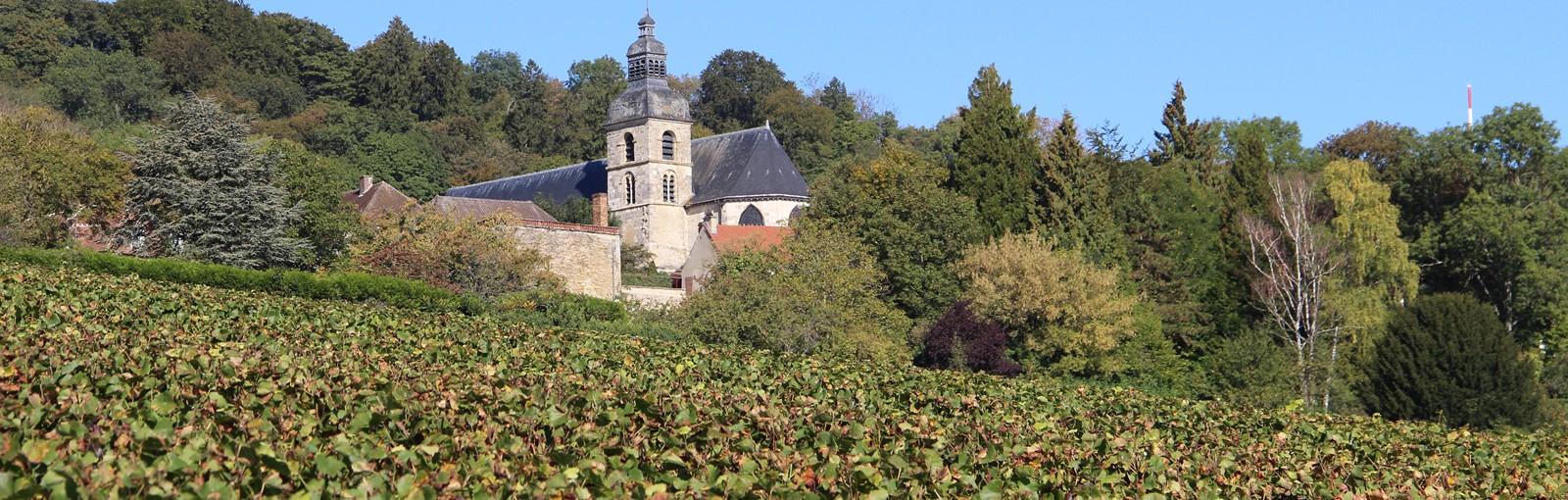 Tours Reims – Champaña - Días completos - Excursiones desde París