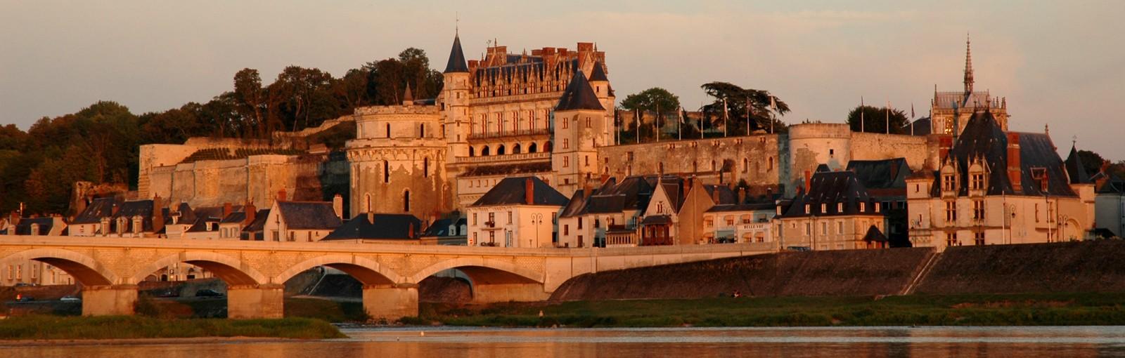 Tours LEONARDO DE VINCI Y VINOS DE AMBOISE - Días completos - Excursiones desde París