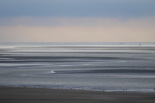 Bahía del Somme - focas - guerra mundial - Crotoy - Hourdel