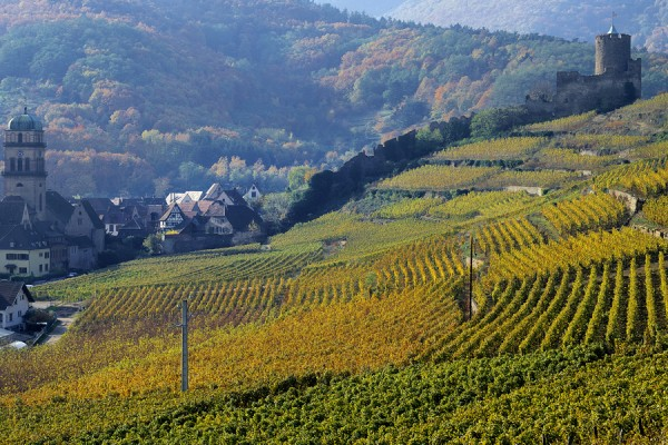 Overnight tour in Alsace - ALSACE - TOURS REGIONALES